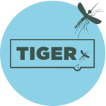 TIGER Webportal mit User Interface Design